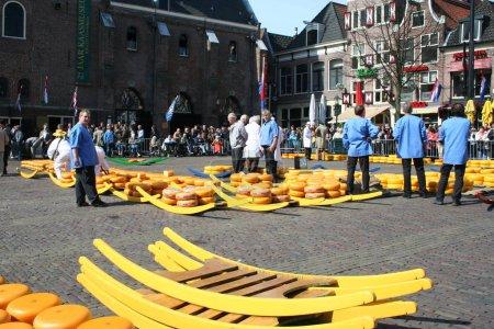 Photo pour Fromage et fromage-transporteurs sur le marché folklorique fromages à Alkmaar, Pays-Bas - image libre de droit