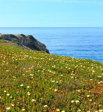 Foto de Summer blossoming Atlantic ocean coast scenery (cape Ponta Da Arrifana, Aljezur, Algarve, Portugal). - Imagen libre de derechos