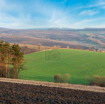 Foto de La primavera mañana paisaje rural país con arado los campos agrícolas en las colinas, los árboles y bosques en valles. Tierras arables y el crecimiento en luz de amanecer delicado tierno - Imagen libre de derechos