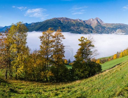 Photo for Sunny idyllic autumn alpine scene. Peaceful misty morning Alps mountain view from hiking path from Dorfgastein to Paarseen lakes, Land Salzburg, Austria. Picturesque hiking and seasonal concept scene. - Royalty Free Image