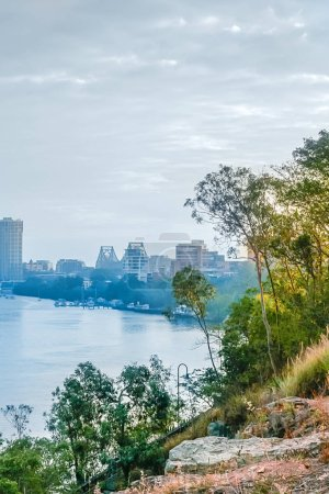 Photo for Detail of river Brisbane surrounded by trees in Australia - Royalty Free Image