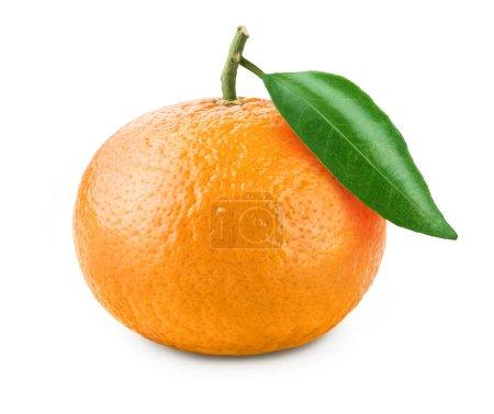 mandarine orange mûre