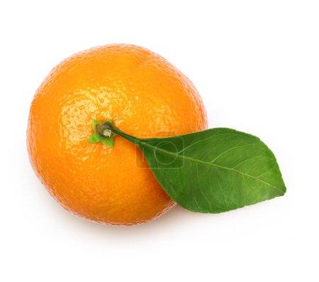 Photo pour Mandarine mûr avec feuilles agrume sur fond blanc - image libre de droit