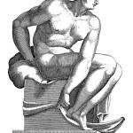 Seated Nude, Adamo Scultori, after Michelangelo, 1...