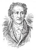 Johann Wolfgang von Goethe 1749-1832 he was a German writer and statesman dramatist lyric poet and philosopher vintage line drawing or engraving illustration