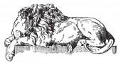 Sleeping Lion is a monument to Pope Clement XIII is found in St Peter's vintage line drawing or engraving illustration