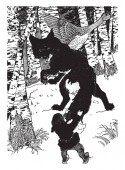 Nils and the Fox, this scene shows fox looking at boy and goose bird in forest, vintage line drawing or engraving illustration