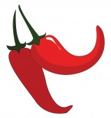 Two red chilis with green petiols vector illustration on white b