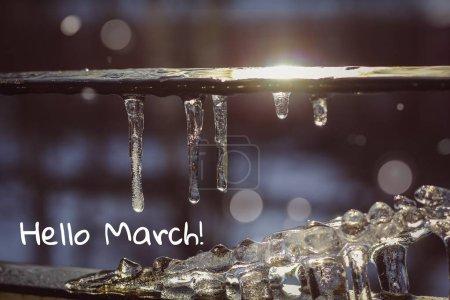 Photo pour Bannière bonjour marche. Carte postale. Salutations du printemps. Nous attendons le printemps. Bonjour, mars. - image libre de droit