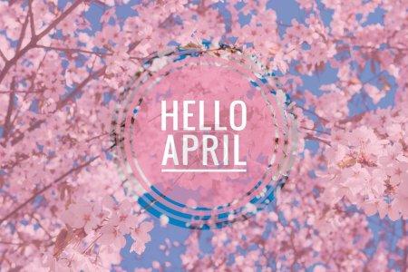 Photo pour Bonjour bannière avril. Salut printemps. Bonjour avril. Carte de bienvenue que nous vous attendons pour le mois de nouveau ressort. Mois du printemps. Le deuxième mois du printemps. - image libre de droit