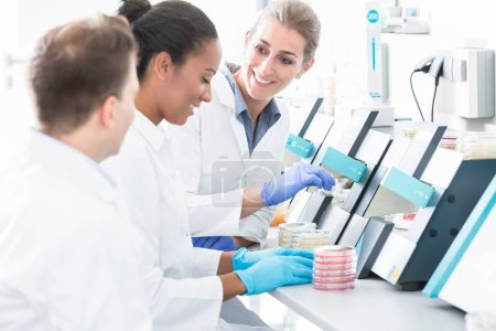 Photo for Group of researchers using scientific technology for test of germ samples - Royalty Free Image