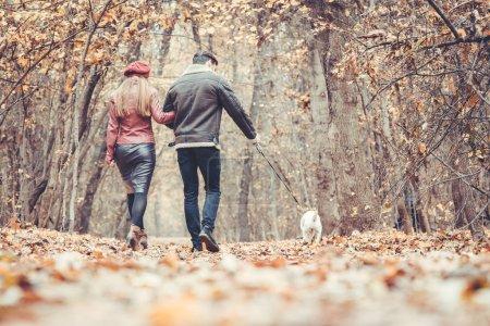 Photo pour Femme et homme à l'automne flânant avec leur chien dans le parc s'embrassant dans l'amour - image libre de droit