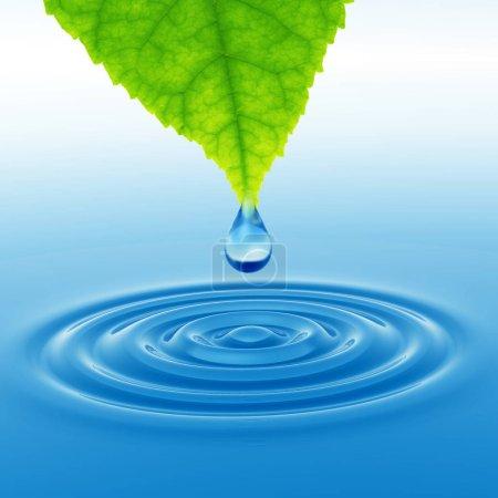 Photo pour Concept ou conceptuel propre eau de source ou goutte de rosée tombant d'une feuille verte fraîche sur illustration 3D bleu eau claire faisant des vagues - image libre de droit
