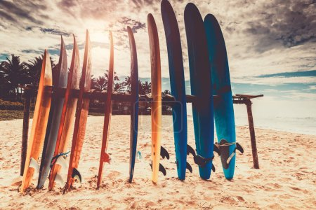 Photo for Surfboards, many different surf boards on the beach, water sport, happy active summer vacation - Royalty Free Image