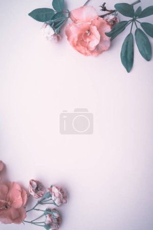 Beautiful floral background with copy space, gentle pink roses border over pink background, stylish vintage wedding invitatio