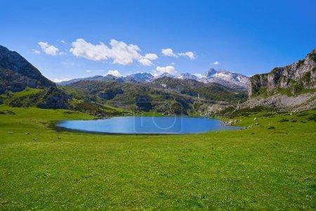 Lac d'Ercina à Picos de Europa, Asturias, Espagne