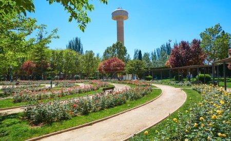 Photo pour Parc del Arbol Fiesta en Espagne Albacete en Castille La Mancha - image libre de droit
