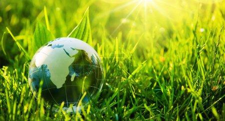 Photo pour Globe de verre dans l'herbe. Green Planet - Concept pour l'environnement - image libre de droit