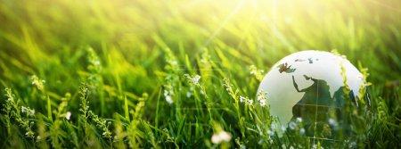 Photo pour Globe en verre dans l'herbe. Planète verte Concept environnement - image libre de droit