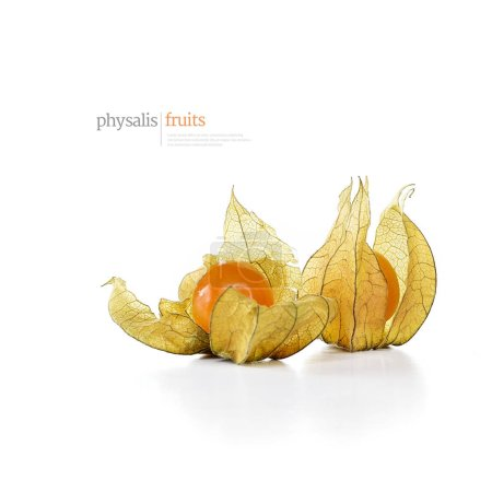 Creatively lit image of physalis fruits against a white background. Generous accommodation for copy space.