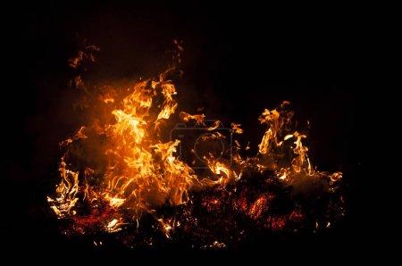 Foto de Llama de fuego sobre negro. Hierba ardiente . - Imagen libre de derechos