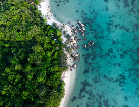 Photo for Aerial view photo from flying drone of an amazing beautiful sea landscape with rainforest near the rocky beach turquoise water with copy space - Royalty Free Image