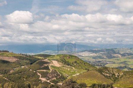 California Landscape - aerial view to the Ventura ...