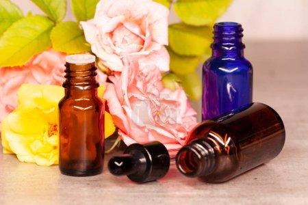Rose flowers and bottles of essential oils for aromatherapy
