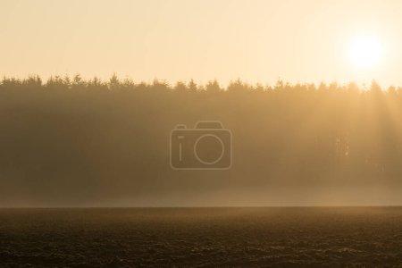 Photo pour Paysage rural le matin dans la brume - image libre de droit