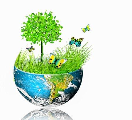 Foto de Concepto ecológico del medio ambiente con el cultivo de árboles. Planeta Tierra. Globo físico de la tierra. Elementos de esta imagen proporcionados por la NASA. Ilustración 3D. La Tierra por NASA . - Imagen libre de derechos