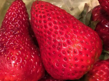 Nahaufnahme von Erdbeeren, die zusammen in einer Schachtel darauf warten, gegessen zu werden. Die Gartenerdbeere ist eine weit verbreitete Hybridart der Gattung Fragaria, die gemeinhin als Erdbeere bekannt ist. Es wird weltweit für seine Früchte angebaut.