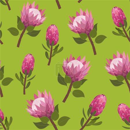 Illustration pour Beau motif avec des fleurs de protéa exotiques. Texture transparente vectorielle tendance . - image libre de droit