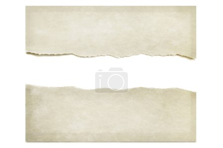 Paper torn in half, isolated on white with drop shadow. Space for text.