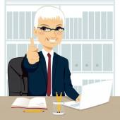 Senior Businessman Working At Office