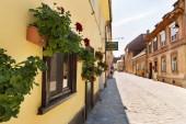 street with flowers, Brasov, Romania, August 10, 2019