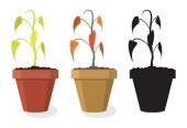 vector set of dying home plants