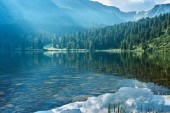 Transparent lake, mountains and forest on their slopes