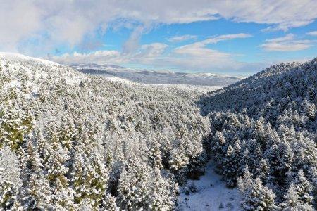 Foto de Hermoso paisaje de Montana. Viaje - Imagen libre de derechos