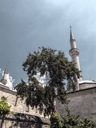Photo pour Détail de l'extérieur de la mosquée Selimiye à Edirne. La mosquée est construite par le célèbre architecte ottoman Mimar Sinan . - image libre de droit