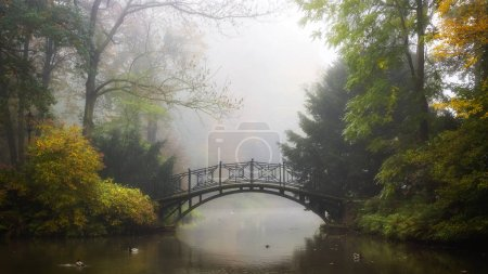 Photo for Scenic view of misty autumn landscape with beautiful old bridge in the garden with red maple foliage. - Royalty Free Image