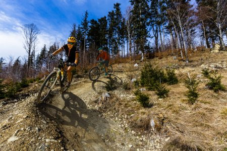 Photo for Cycling woman and men riding on bikes at sunset mountains forest landscape. Couple cycling MTB enduro flow trail track. Outdoor sport activity. - Royalty Free Image