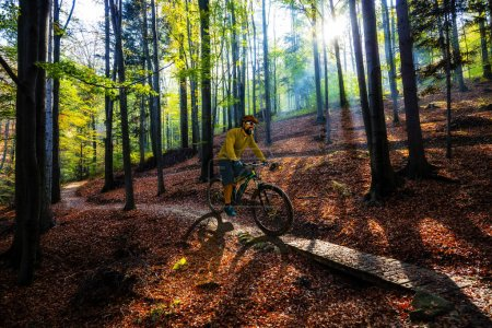 Photo for Mountain biker riding on bike in spring mountains forest landscape. Man cycling MTB enduro flow trail track. Outdoor sport activity. - Royalty Free Image