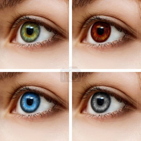 Photo for Woman with different color of eyes. Different colorful contact lenses. - Royalty Free Image