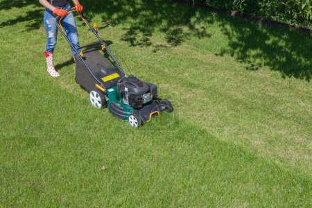Woman mowing grass with lawn mower in garden
