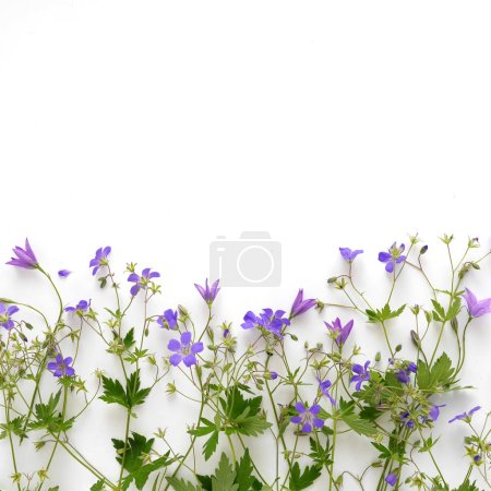 Floral border made of violet bellflowers and wildf...