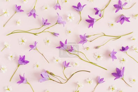 Seamless pattern of white wildflowers and bellflow...