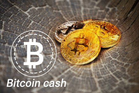 Photo for Bitcoin is a modern way of exchange and this crypto currency is a convenient means of payment - Royalty Free Image