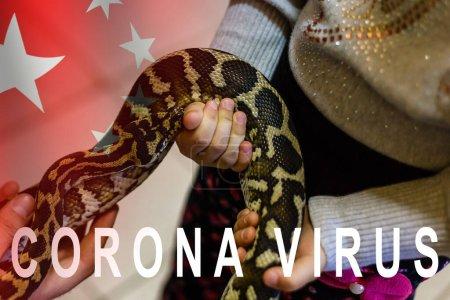 Photo pour Gros plan de la tête du serpent sur fond noir comme source possible de coronavirus - image libre de droit