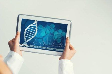 Photo pour Tablette pc dispositif avec écran d'interface de la médecine dans les mains du médecin - image libre de droit