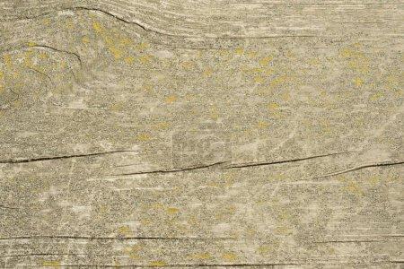 Foto de La textura de madera vieja con patrones naturales con color agrietado, Fondo. - Imagen libre de derechos